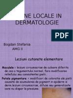 dermato (2)