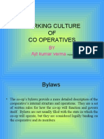 Working Culture of Cope Rat Ives