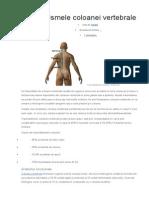 TVM traume vertebro medulare