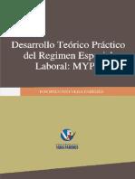 Desarrollo Teorico Practico Laboal MYPE