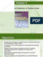 mdfund_unit7Chapter05ResolutionandDetectionofNucleicAcids