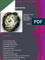 dependente (1)