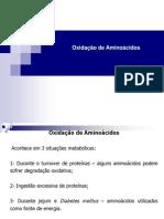 Oxidação de Aminoácidos - Fabio