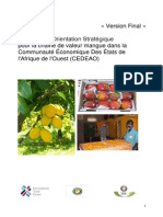 Strategie_CEDEAO_mangue Final draft.pdf