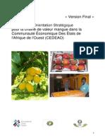 Strategie_CEDEAO_mangue Final draft.pdf