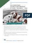 Exchange 2013 coexistence and client protocol connectivity flow   The prefix   1#23