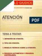 CONSTRUCCION DE CONOCIMIENTOS