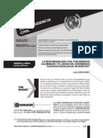 2.5.responsabilidad_civil_por_denuncia_calumniosa.pdf