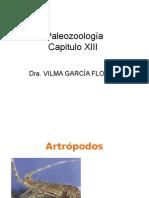 Capitulo 13  Paleotologia animal Invertebrados artropodos.ppt