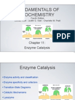 Chapter 11 Enzymes FINAL