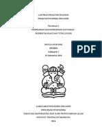 PKO 1 - percobaan 2