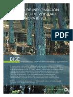ES BISE flyer (1)