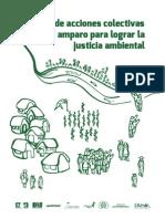 Manual de Acciones Colectivas y Amparo Justicia Ambiental