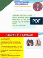 carcinoma-pulmonar-1233081213014945-3.ppt