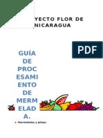 GUIA DE PROCESAMIENTO DE MERMELADAS..docx