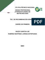 DISEÑO PRIMERS