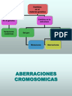 ABERRACIONES CROMOSOMICAS
