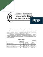Capitolul 6 Aspecte Economico - Ecologice in Diferite Sectoare de Activitate