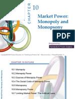 Chapter 10 Microeconomics