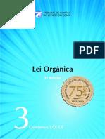 03_lei_organica.pdf