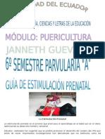 guiadejjjjjjestimulacinprenatal-120202183235-phpapp01