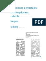 Citomegalo Virus Articulo (1)