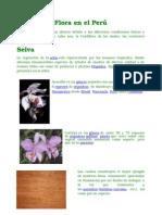 Flora en el Perú.doc