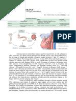 CALCIUM PHYSIOLOGY.doc
