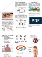 Triptico El Dengue