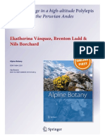 Carbon storage in a high-altitude Polylepis woodland in the Peruvian Andes