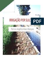 aula_teoria_de_sulcos.pdf