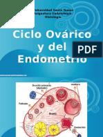 Ciclo Ovarico y control hormonal