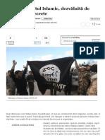Structura Statul Islamic