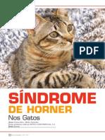 Sindrome_de_Horner_nos_gatos.pdf