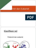 Pro Kario Teuk a Riot
