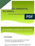 A Questão Ambiental No Brasil