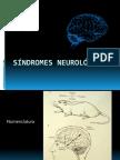 68033505--Sindromes.pdf
