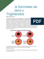 Niveles Normales de Colesterol y Triglicéridos