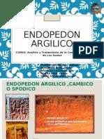 Endopedon Argilico Cambico o Spodico