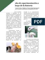 Articulo a.experimentaciu00F3n