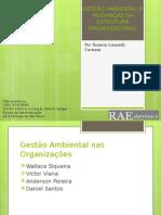 Gestão Ambiental e Mudanças Da GESTÃO AMBIENTAL E MUDANÇAS DA ESTRUTURA ORGANIZACIONAL.