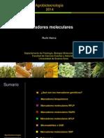 Clase 13  Marcadores Moleculares