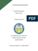 Reporte de La Central Nucleoelectrica Laguna Verde