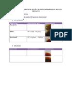 Practica 5 y 6 Identificacion Quimica de Los Alcaloides Derivados de Nucleo Indolico