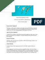 intro practice summary paper