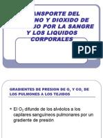 Transporte Del Oxigeno y Dioxido de Carbono (40)