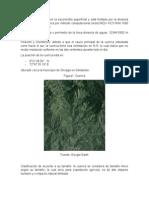Informe Cuenca