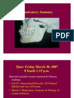 Masticatory Anatomy