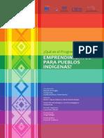 Emprendimientos Para Pueblos Indígenas