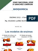 10. Enzimas II